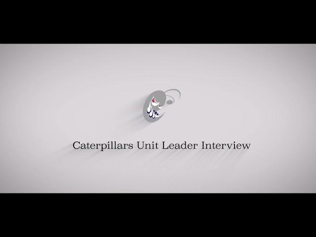 アメフト社会人チームの電通キャタピラーズの映像コンテンツ「キャタポジション紹介⑥ OL」