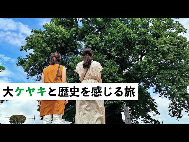 大ケヤキと歴史を感じる旅(春夏版)