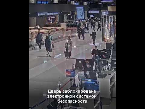 Инцидент в Терминале В аэропорта Шереметьево 10.10.2019 г