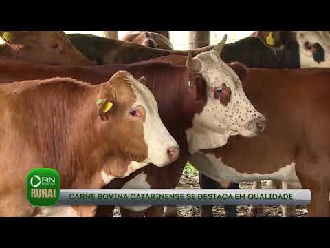 Carne bovina catarinense se destaca