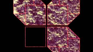 "CHROMATICS ""AT YOUR DOOR"" (8 Track Version) Cherry LP"