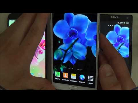 Video of Orchids Wallpaper