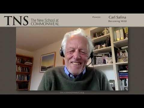 Vidéo de Carl Safina