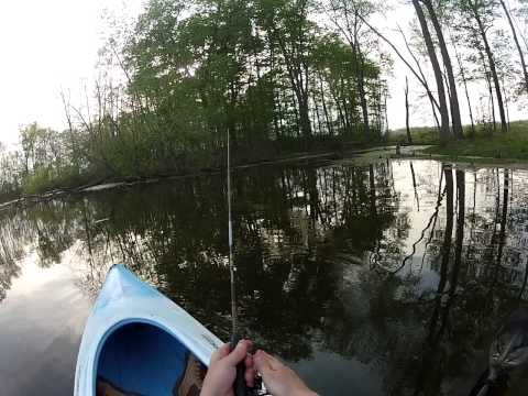 GoPro Pond Kayak Fishing, Two Bluegills
