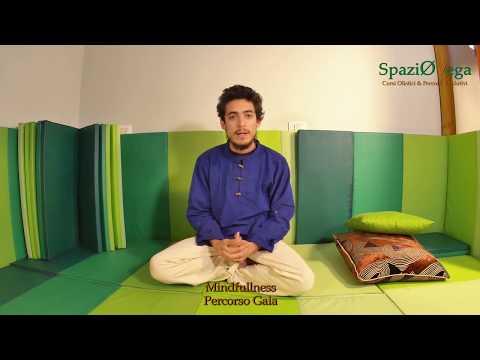 Olisticmap - Intervista Dhyani allo SpaziOVega