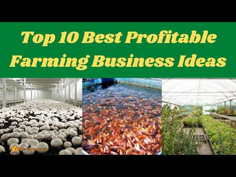 , title : 'Top 10 Best Profitable Farming Business Ideas
