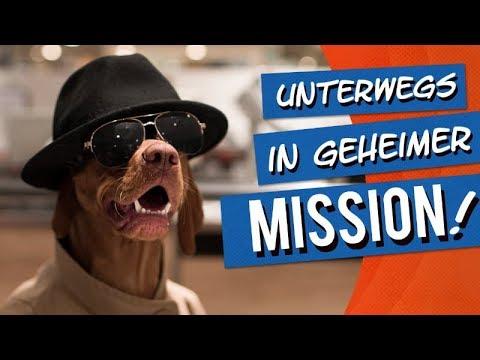 """bosch   Fruitees - Der fruchtige Hundesnack #1 """"In geheimer Mission"""""""