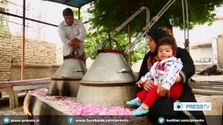 IRAN Rosewater in Kashan