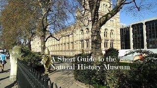 A  Short Guide to the Natural History Museum in London