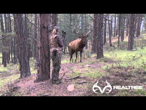Female Bowhunter Stares Down Giant Bull Elk at 4 Yards