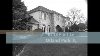 8718 Flint Lane, Orland Park, IL 60462 - MLS #08981924