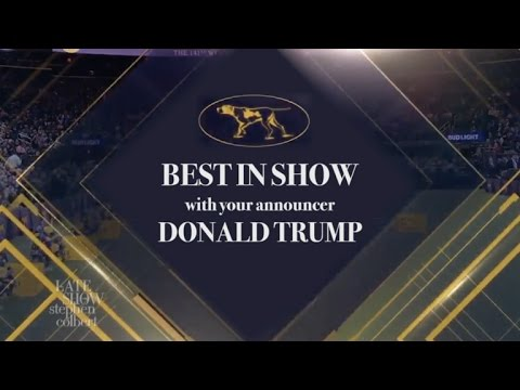 Trump At The Westminster Dog Show: Grab 'Em By The Puppy