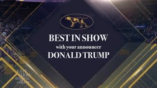 Trump At The Westminster Dog Show: Grab