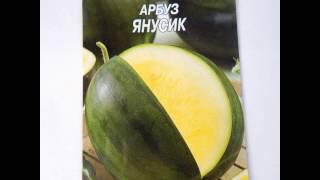 Семена сортов и гибридов арбуза для выращивания в 2016 г. Seeds of watermelon.