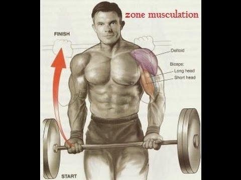 Pourquoi devient muet le muscle direct de la cuisse