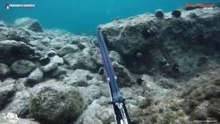 Ψαρεύοντας με ρηχό καρτέρι σαργούς και κέφαλους/Shallow Water Spearfishing Sargos - Mullets.