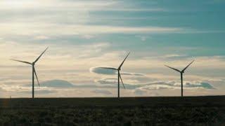 Inauguraron un parque eólico en la provincia de Chubut