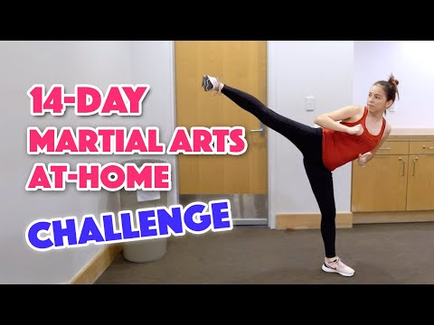 14-Day Martial Arts Workout Challenge (Day 1)