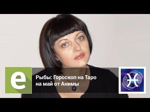 Гороскоп на август овен женщина 2017 видео