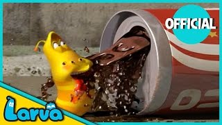 LARVA - TEA  Best Cartoon Movie   Cartoons For Children   LARVA Official