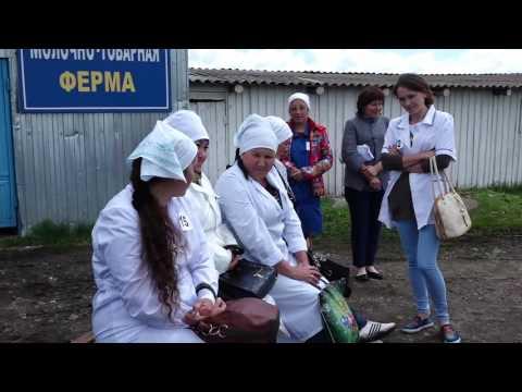 Конкурс операторов машинного доения и техников-осеменаторов - 08.06.2017г.