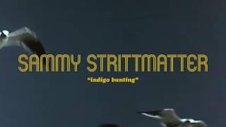 """Sammy Strittmatter - """"Indigo Bunting"""""""