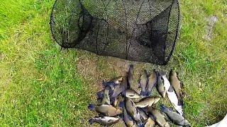 Изготовление мордушки для ловли рыбы