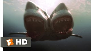 2-Headed Shark Attack (9/10) Movie CLIP - Fears Don