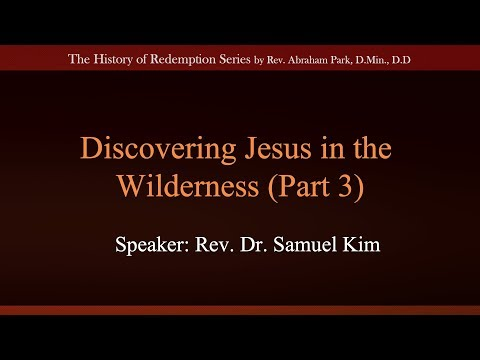 Discovering Jesus in the Wilderness Part 3