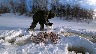 Форум санататур рыбалка на севере