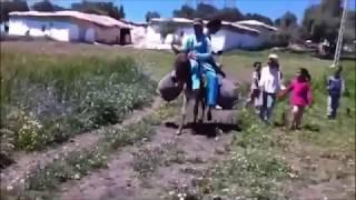 preview picture of video 'Un voyage à la ferme village khyam Bouchta Karia Ba Mohamed'