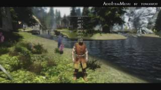 TES V Skyrim Mods: AddItemMenu by towawot