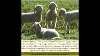 Animal Rights Quotes - Prof. Gary L. Francione (No. 2)