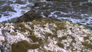 Rock Formations at Nagoa Beach, Diu