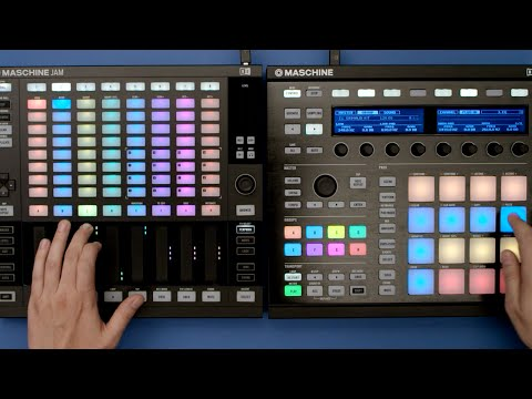 maschine native instruments serial number