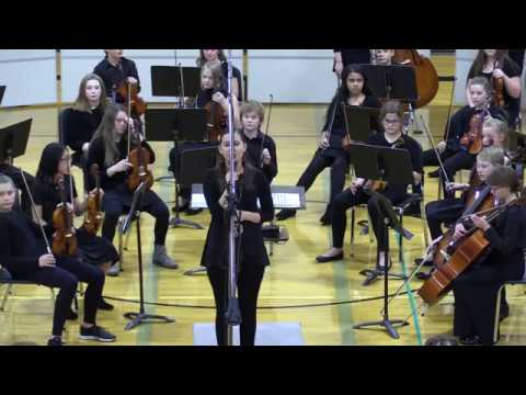 DMS Fall Orchestra Concert 2019