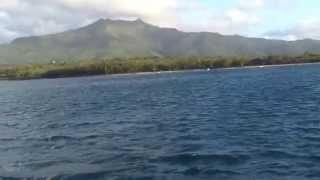 preview picture of video 'Catamaran Trip in Black River'
