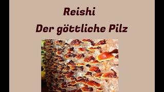 Reishi : Der göttliche Pilz (Arthritis, Atemwegserkrankungen, Krebs, Autoimmunerkrankungen)