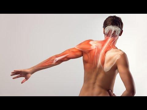 Dolore nella parte bassa della schiena e linguine e glutei