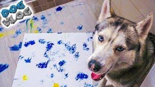 НАРИСОВАЛ КАРТИНУ ЛАПАМИ, А ИМ НЕ НРАВИТСЯ! (Хаски Бандит) Говорящая собака