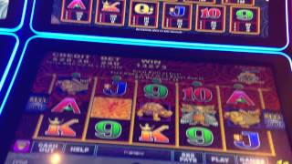 5 dragons deluxe slot machine