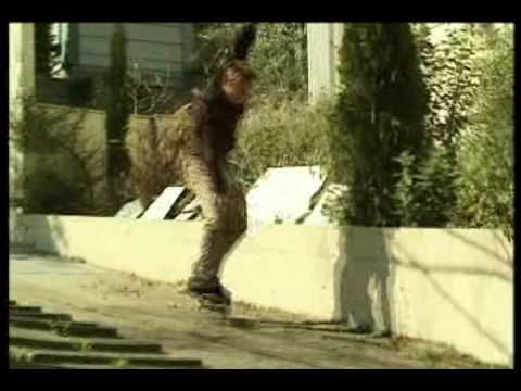 DVS Skate More - Zered Bassett and Dennis Busenitz