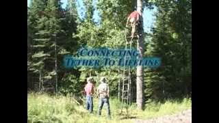 Playing It Safe With Tree Stands 4:  Ladder Stands