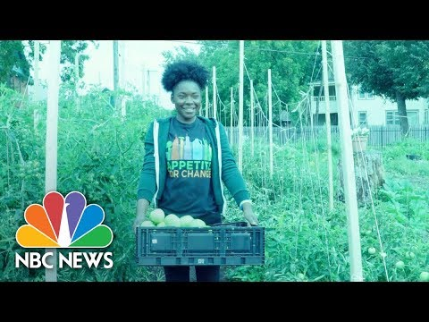 Appetite For Change: The Nonprofit Building An Oasis Inside A Food Desert | NBC News
