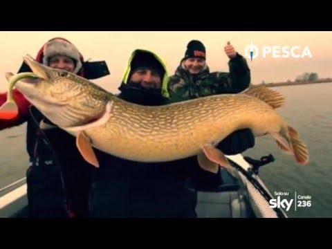 La caccia e la pesca in Oleg Sarana
