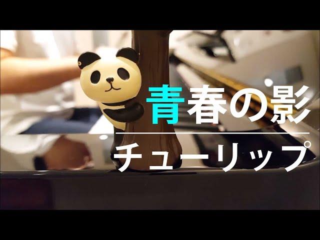 【ピアノ弾き語り】青春の影/チューリップ by ふるのーと (cover)