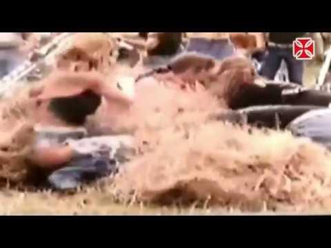 Brotherhood of Man Motorhead  Hells Angels footage included