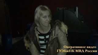 Операция по ликвидации незаконных игорных заведений в Московском регионе