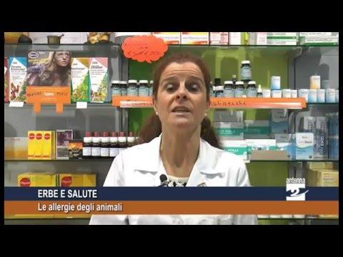 Quello che aiuta da eczema meglio
