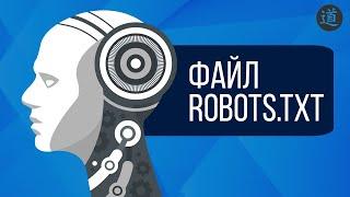 Файл robots txt - ОБЯЗАТЕЛЬНО должен быть на сайте!